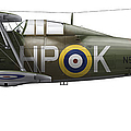 A Gloster Gladiator Mk II by Chris Sandham-Bailey