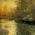 A Golden Autumn At The Unami by Mother Nature