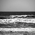 A Gray November Day At The Beach - II  by Susanne Van Hulst