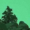 A Green Day For A Pinon by Carolina Liechtenstein