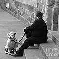 A Lady With Her Dog In Barcelona by Ana Maria Edulescu