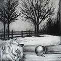A Lazy Winter Day by Carla Carson