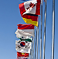A Line Of Flags Represent The Countries by Stocktrek Images