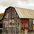 A Mail Pouch Barn In West Virginia by Kathleen K Parker