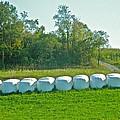 A Marshmallow World In Wisconsin by Randy Rosenberger