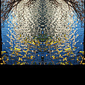 A Mirror Image Of Sparkling Water Reflection by Jennifer Holcombe