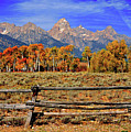 A Moment In Wyoming In Autumn by Jeff R Clow