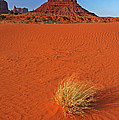 A Monument Valley View by Dave Mills