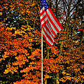 A Patriotic Autumn by David Patterson