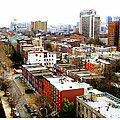 A Philadelphian View by Alice Gipson