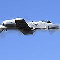 A Pilot In An A-10 Thunderbolt II Fires by Stocktrek Images