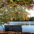 A Place For Thanks Giving by Sandi OReilly
