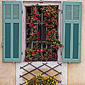 A Provence Window by Dave Mills