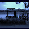 A Quiet Place By The Marsh by DigiArt Diaries by Vicky B Fuller