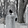 A Quiet Winter Day At The Graveyard by Gothicrow Images