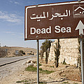 A Road Sign In Both Arabic And English by Taylor S. Kennedy