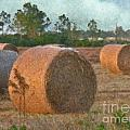 A Roll In The Hay by Peggy Starks