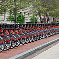A Row Of Red Bikes by Eva Kaufman