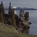 A Scenic View Of Yellowstone Lake by Tom Murphy