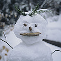 A Smiling Snowman With Twig Arms by Bill Curtsinger