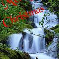 A Snowless Christmas by DeeLon Merritt