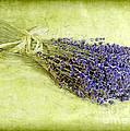 A Spray Of Lavender by Judi Bagwell