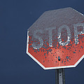 A Stop Sign Covered In Snow by John Burcham