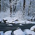 A Stream Running Through Snowy Woodland by Mattias Klum