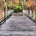 A Stroll Through Autumn by JC Findley