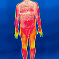 A Thermogram Of A Nude Man by Ted Kinsman