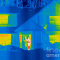 A Thermogram Of A Person Waving In House by Ted Kinsman