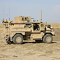 A U.s. Army Cougar Mrap Vehicle by Terry Moore
