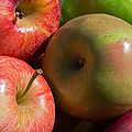 A Variety Of Apples by Heidi Smith