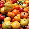 A Variety Of Fresh Tomatoes - 5d17811 by Wingsdomain Art and Photography