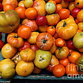 A Variety Of Fresh Tomatoes - 5d17812 by Wingsdomain Art and Photography