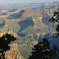 A View Of The Grand Canyon by Bill Hatcher