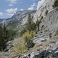 A View Through Goddard Canyon by Rich Reid