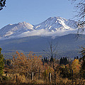 A View Toward Mt Shasta In Autumn by Mick Anderson