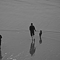 A Walk In The Beach by Eric Tressler
