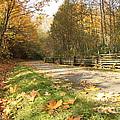 A Walk In The Park by Nancy Harrison