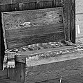 A Weathered Bench Black And White by Phyllis Denton