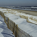 A Wooden Fence Casts A Shadow by Medford Taylor