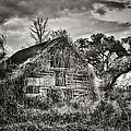 Abandoned Barn 2 by Brenda Bryant