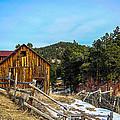 Abandoned Barn by Shannon Harrington