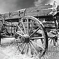 Farming Nostalgia by Bob Christopher