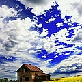 Abandoned Farmhouse In A Canola Field by Don Hammond