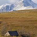 Abandoned Farmhouse Outside Of Waterton by Robert Postma