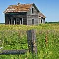 Abandoned Prairie Farmhouse No.4221 by Randall Nyhof
