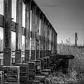 Abandoned Railway  by Lisa Knechtel