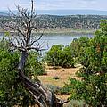Abiquiu Lake New Mexico 2 by Vicki Pelham